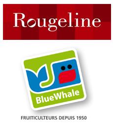 Traçabilité des livraisons : projet Exprimis rassemble Rougeline et BlueWhale